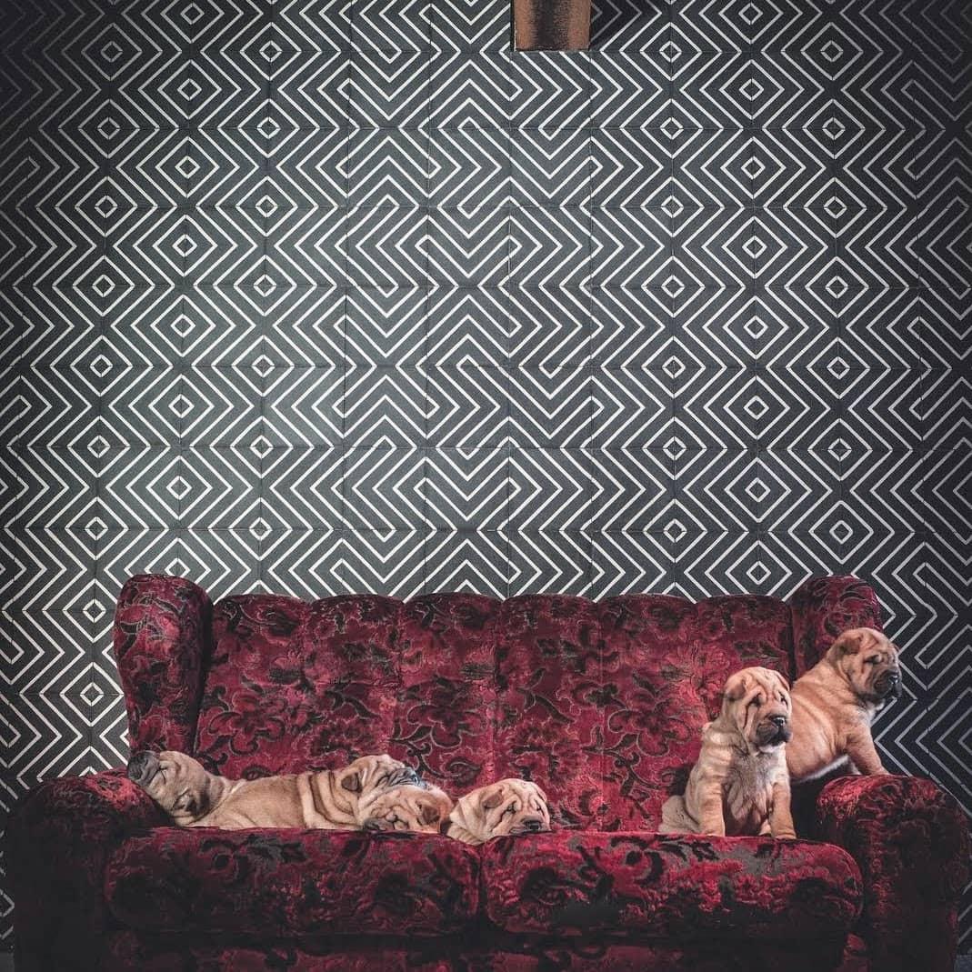 Pattern Tiles by Rubin